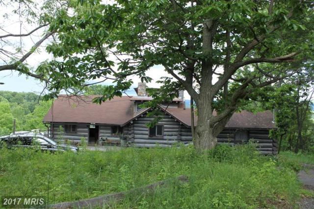 10527 School House Hollow Road, Huntingdon, PA 16652 (#HU9970682) :: LoCoMusings