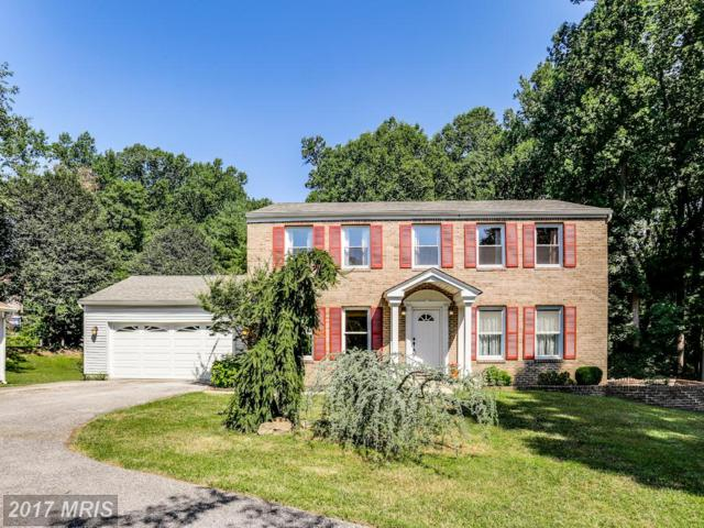 10038 Tanya Court, Ellicott City, MD 21042 (#HW10003213) :: LoCoMusings
