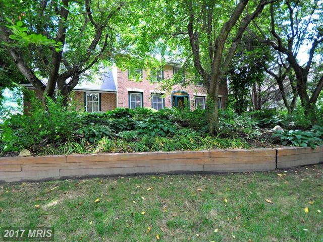 2919 Timber Trails Court, Ellicott City, MD 21042 (#HW10003998) :: Pearson Smith Realty