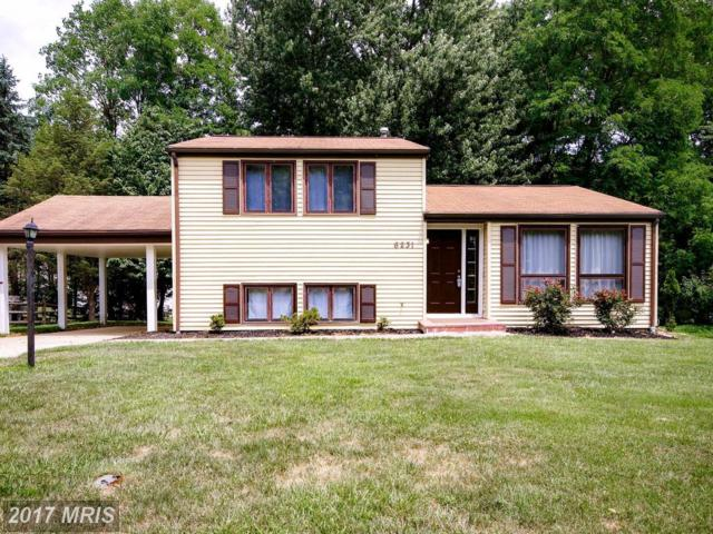 6231 Tamar Drive, Columbia, MD 21045 (#HW10005132) :: Pearson Smith Realty