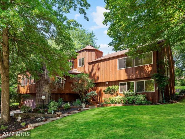 11314 Buckleberry Path, Columbia, MD 21044 (#HW10008371) :: Pearson Smith Realty