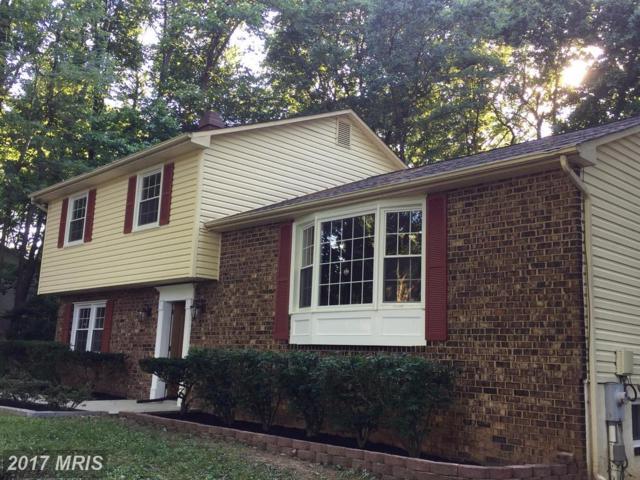 13520 Argo Drive, Dayton, MD 21036 (#HW10010249) :: Keller Williams Pat Hiban Real Estate Group