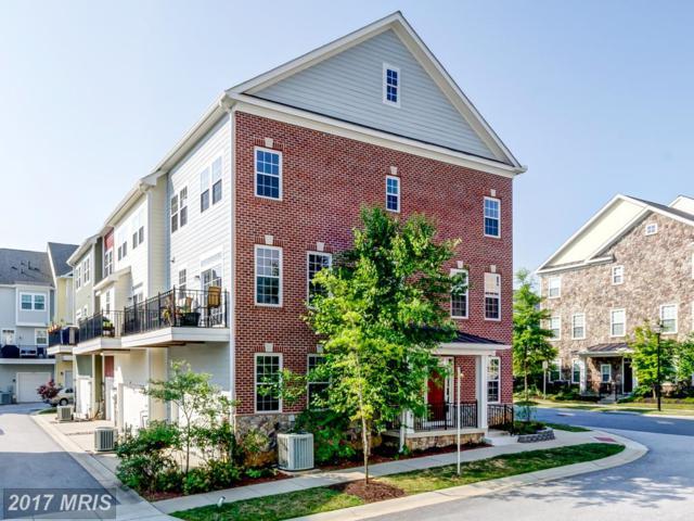 6028 Talbot Drive, Ellicott City, MD 21043 (#HW10011262) :: Keller Williams Pat Hiban Real Estate Group