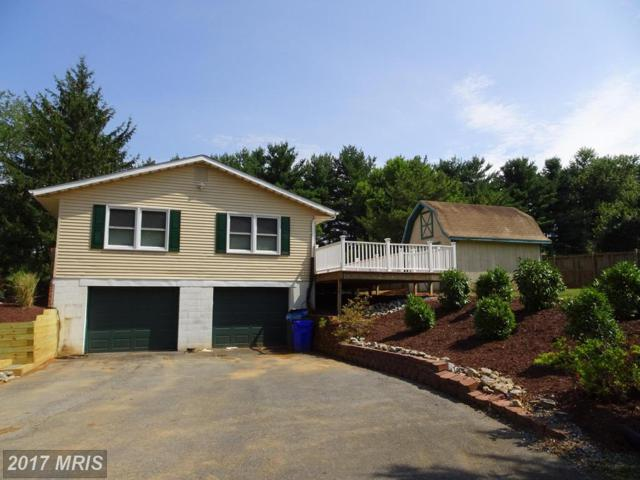 16961 Moss Meadow Way, Mount Airy, MD 21771 (#HW10013107) :: LoCoMusings