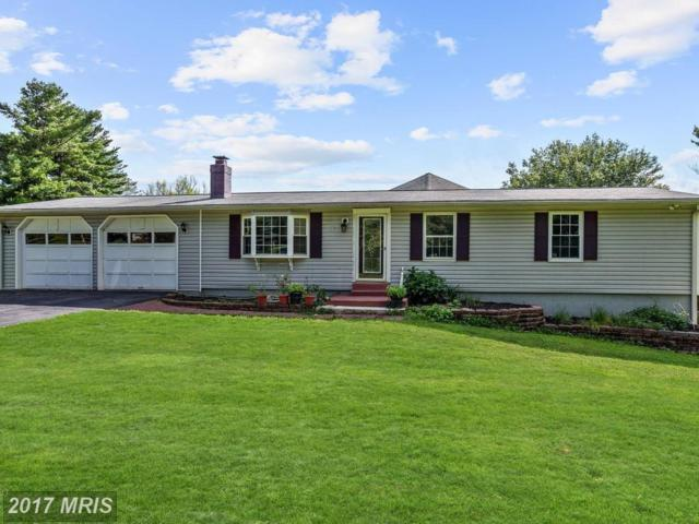 2900 Florence Road, Woodbine, MD 21797 (#HW10013589) :: Charis Realty Group