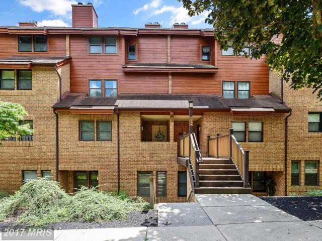7539 Weather Worn Way B, Columbia, MD 21046 (#HW10016704) :: Pearson Smith Realty