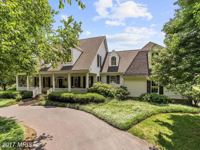 10419 Queensway Drive, Ellicott City, MD 21042 (#HW10017112) :: Pearson Smith Realty