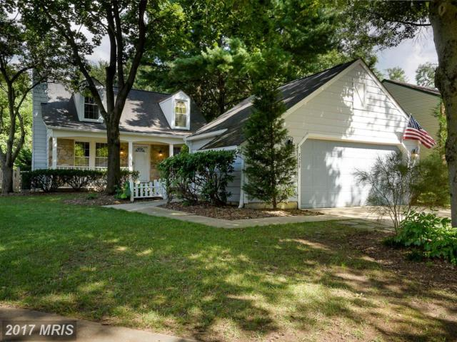 7329 Little Bird Path, Columbia, MD 21046 (#HW10020642) :: Pearson Smith Realty