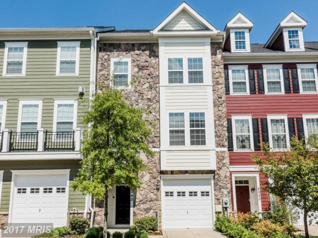 6042 Talbot Drive, Ellicott City, MD 21043 (#HW10034445) :: The Sebeck Team of RE/MAX Preferred