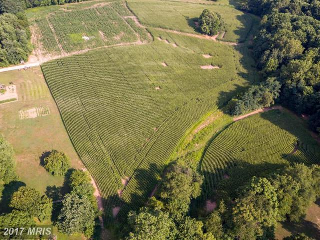 LOT 4 Frederick Rd, Woodbine, MD 21797 (#HW10049204) :: Pearson Smith Realty
