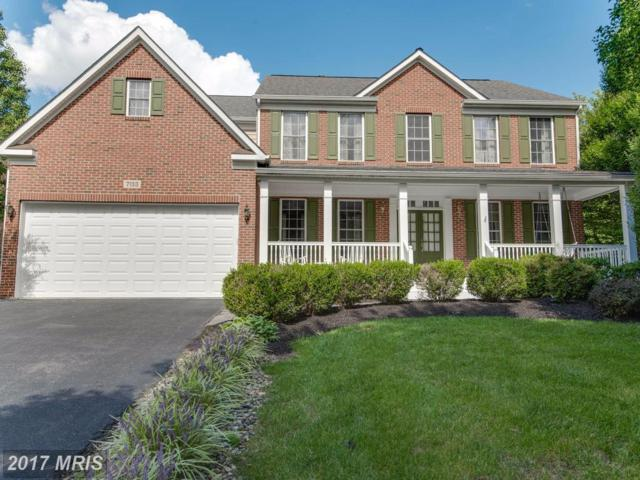 7133 Collingwood Court, Elkridge, MD 21075 (#HW10057841) :: LoCoMusings