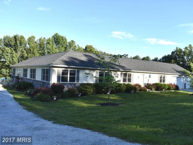 715 Watersville Road, Mount Airy, MD 21771 (#HW10057844) :: Pearson Smith Realty