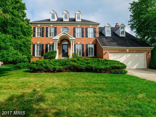 8386 Autumn Rust Road, Ellicott City, MD 21043 (#HW10060156) :: Wes Peters Group