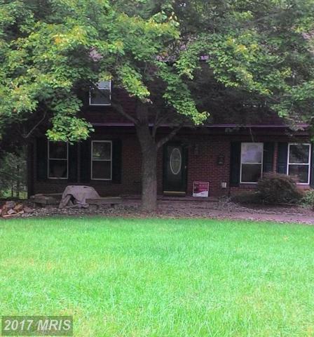 10072 Maplewood Drive, Ellicott City, MD 21042 (#HW10061383) :: Keller Williams Pat Hiban Real Estate Group