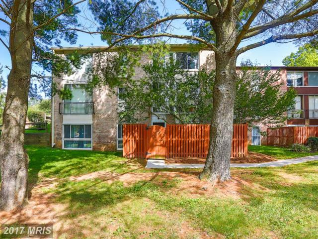 10790 Green Mountain Circle 20-7, Columbia, MD 21044 (#HW10062249) :: Wes Peters Group