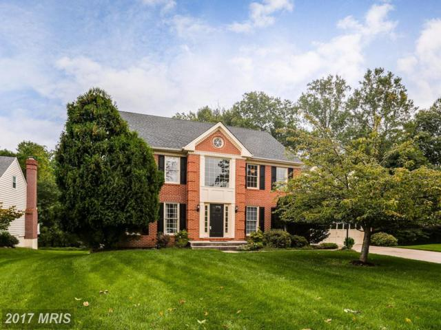 3812 Portman Place, Ellicott City, MD 21042 (#HW10062898) :: The Maryland Group of Long & Foster