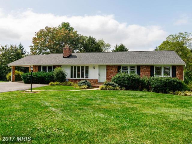 2618 Liter Court, Ellicott City, MD 21042 (#HW10063168) :: The Maryland Group of Long & Foster