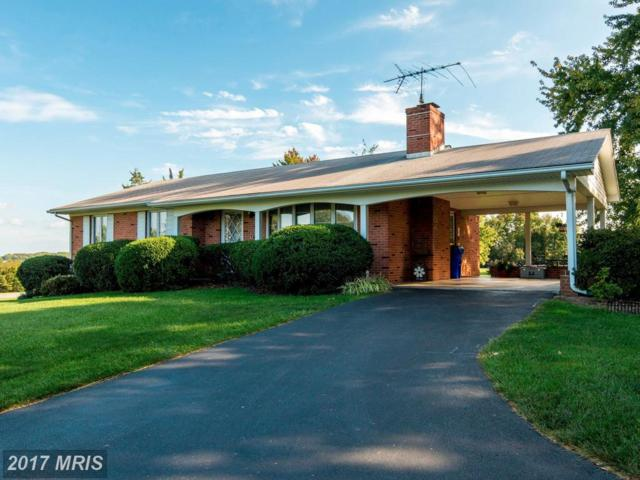 18703 Penn Shop Road, Mount Airy, MD 21771 (#HW10064057) :: The Maryland Group of Long & Foster