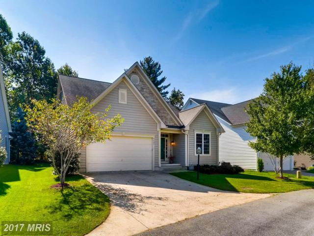 9627 Boundless Shade Terrace, Laurel, MD 20723 (#HW10072837) :: Pearson Smith Realty