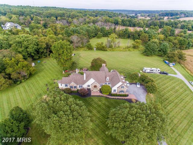 4179 Heritage Hill Lane, Ellicott City, MD 21042 (#HW10074354) :: Pearson Smith Realty