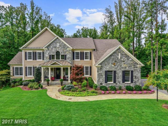 11247 Independence Way, Ellicott City, MD 21042 (#HW10080182) :: LoCoMusings