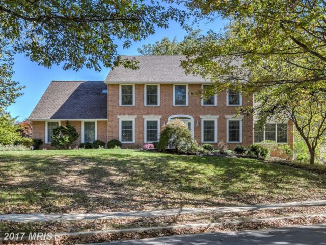 2802 Quail Creek Court, Ellicott City, MD 21042 (#HW10083859) :: Pearson Smith Realty