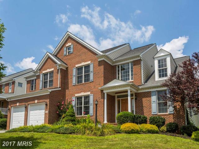 3041 Carlee Run Court, Ellicott City, MD 21042 (#HW10091410) :: Pearson Smith Realty