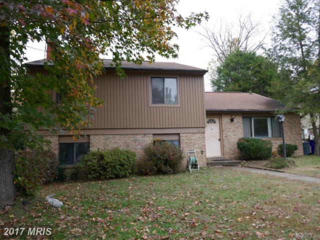 10358 Whitewasher Way, Columbia, MD 21044 (#HW10106547) :: ExecuHome Realty