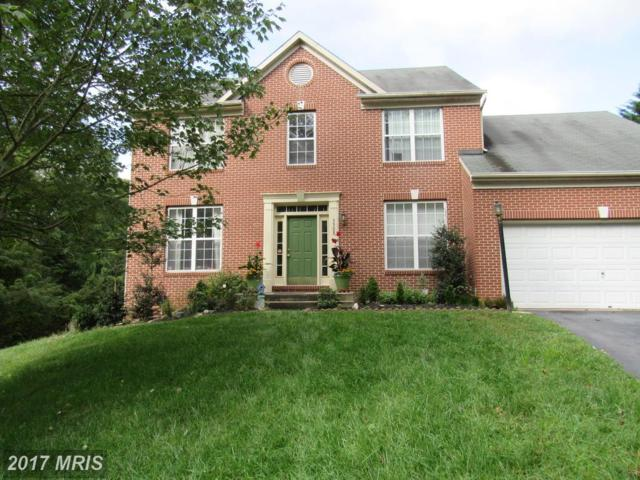 3308 Governor Johnson Court, Ellicott City, MD 21043 (#HW10106917) :: Pearson Smith Realty