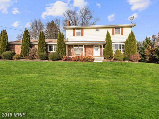 17226 Hardy Road, Mount Airy, MD 21771 (#HW10112331) :: Pearson Smith Realty