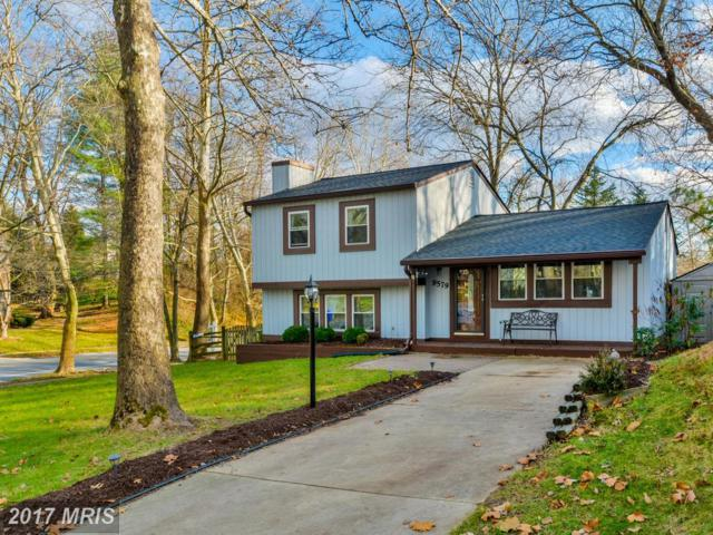 9579 Castile Court, Columbia, MD 21045 (#HW10113889) :: The Bob & Ronna Group