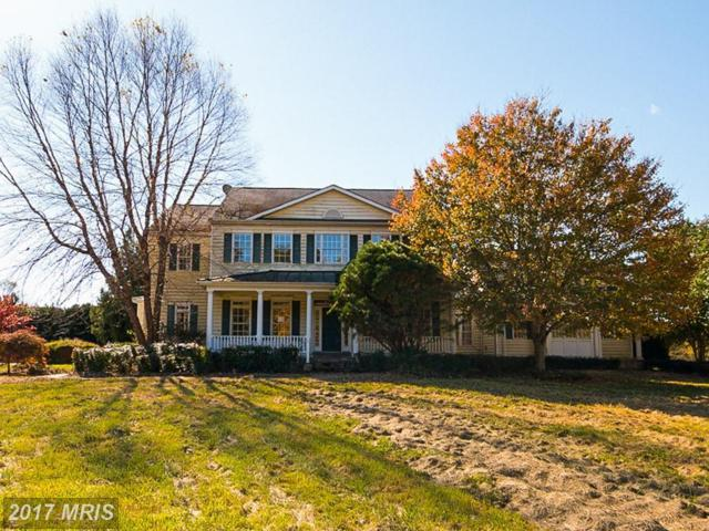 11805 Frederick Road, Ellicott City, MD 21042 (#HW10115885) :: RE/MAX Advantage Realty