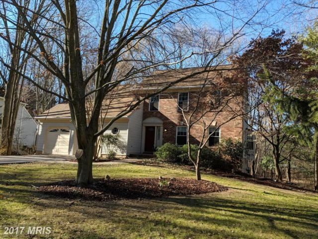 10265 Bristol Channel, Ellicott City, MD 21042 (#HW10119268) :: The Sebeck Team of RE/MAX Preferred