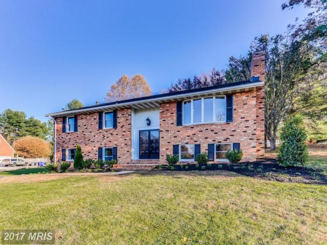 9409 Parsley Drive, Ellicott City, MD 21042 (#HW10121390) :: The Sebeck Team of RE/MAX Preferred
