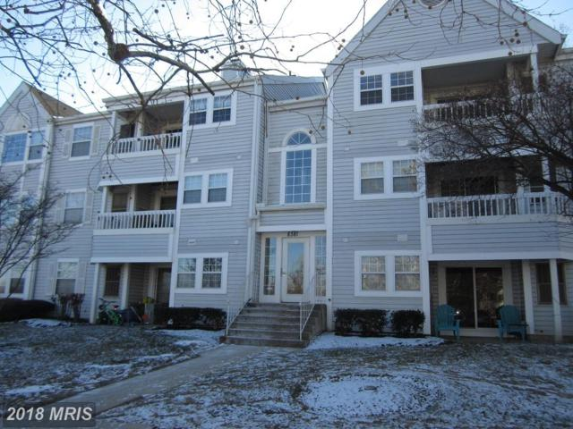 8381 Montgomery Run Road L, Ellicott City, MD 21043 (#HW10127844) :: Pearson Smith Realty