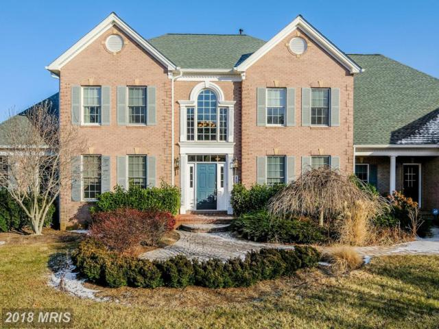 15174 Sapling Ridge Drive, Dayton, MD 21036 (#HW10129776) :: Pearson Smith Realty