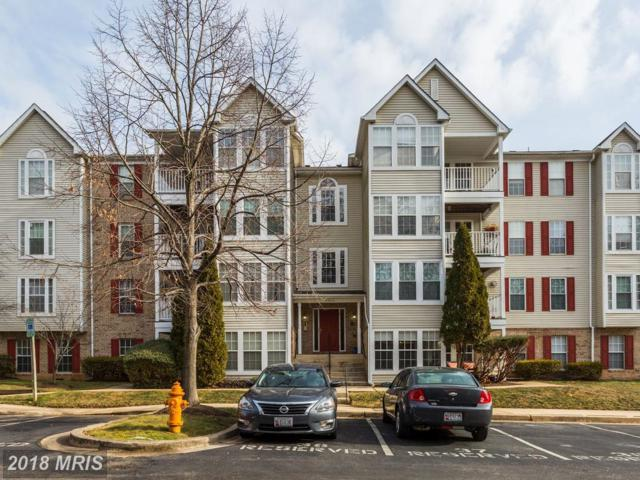 6320 Bayberry Court #901, Elkridge, MD 21075 (#HW10133474) :: Pearson Smith Realty