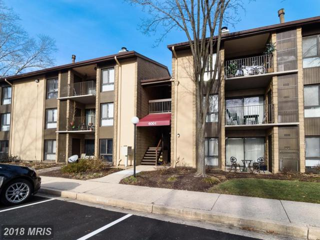 6001 Majors Lane #11, Columbia, MD 21045 (#HW10136799) :: RE/MAX Advantage Realty