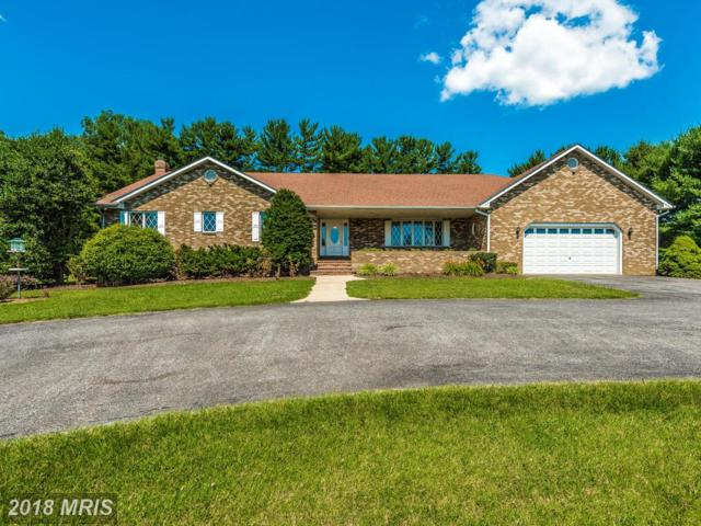 17502 Country View Way, Mount Airy, MD 21771 (#HW10136807) :: The Savoy Team at Keller Williams Integrity
