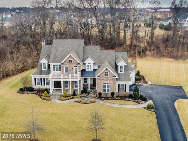 12431 Watkins Bridge Lane, Clarksville, MD 21029 (#HW10139293) :: Keller Williams Pat Hiban Real Estate Group