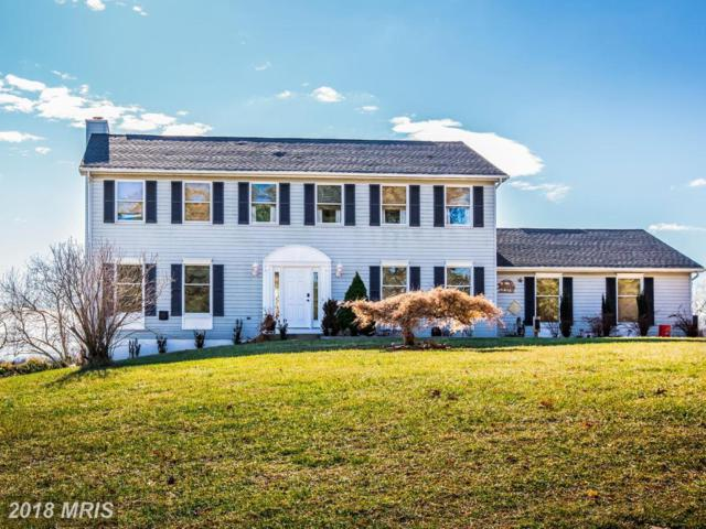 12745 Triadelphia Road, Ellicott City, MD 21042 (#HW10143445) :: The Maryland Group of Long & Foster