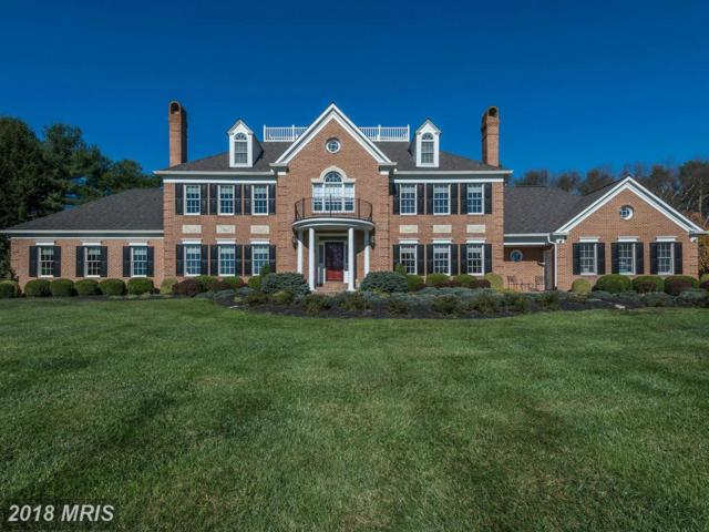 5105 Sheppard Lane, Ellicott City, MD 21042 (#HW10157282) :: The Maryland Group of Long & Foster
