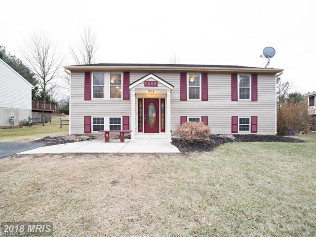 5558 Hunting Horn Drive, Ellicott City, MD 21043 (#HW10158229) :: The Maryland Group of Long & Foster