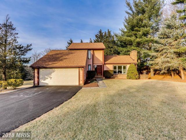 14376 Dorsey Mill Road, Glenwood, MD 21738 (#HW10158364) :: The Gus Anthony Team