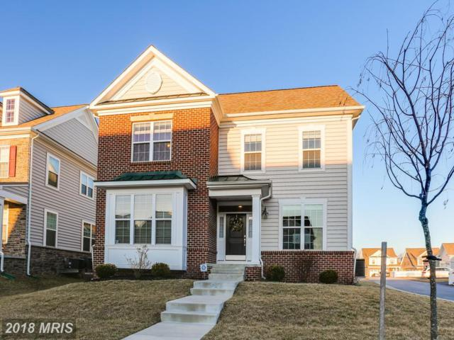 2717 Cheekwood Circle, Ellicott City, MD 21042 (#HW10163530) :: Wes Peters Group
