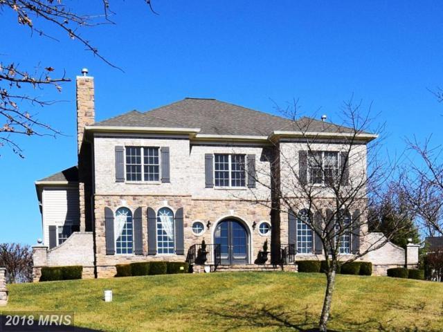13623 Fox Stream Way, West Friendship, MD 21794 (#HW10180166) :: Blackwell Real Estate