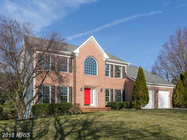 2906 Poland Springs Drive, Ellicott City, MD 21042 (#HW10185243) :: Blackwell Real Estate