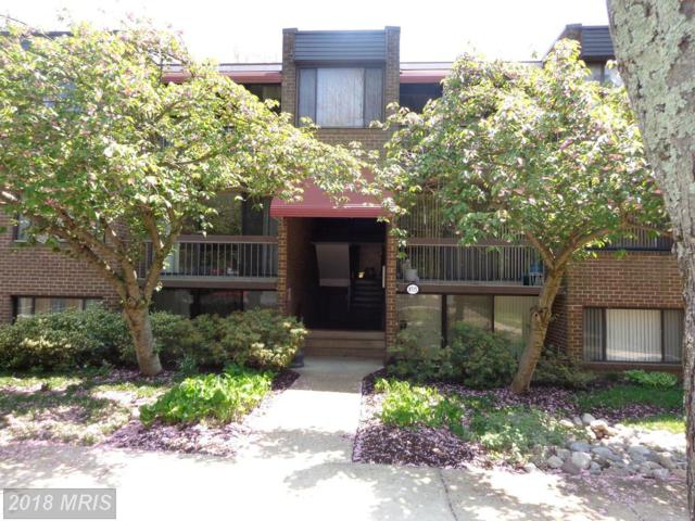8715 Hayshed Lane #33, Columbia, MD 21045 (#HW10189440) :: The Sebeck Team of RE/MAX Preferred