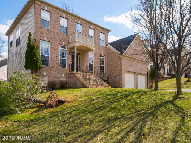 8031 High Castle Road, Ellicott City, MD 21043 (#HW10203919) :: Keller Williams Pat Hiban Real Estate Group