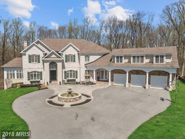 7028 Meandering Stream Way, Fulton, MD 20759 (#HW10214902) :: Keller Williams Pat Hiban Real Estate Group